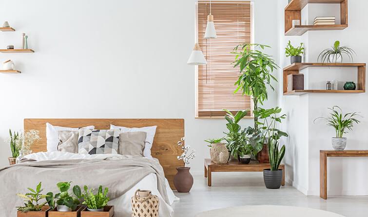 Rolety wewnętrze w oknie sypialni